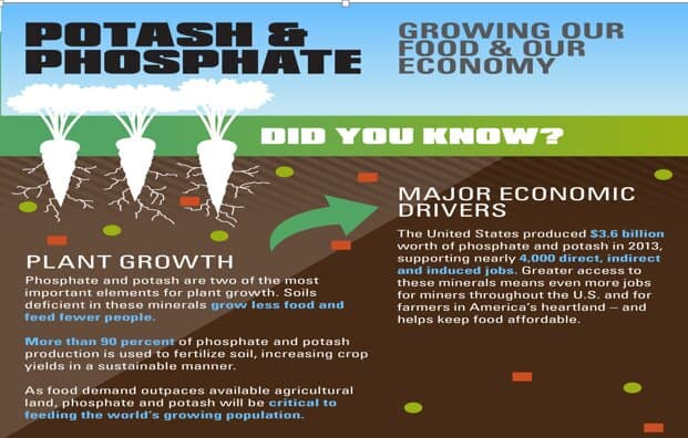 potoash and phosphate infograph
